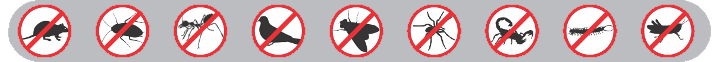 Pest control specialists in Johannesburg